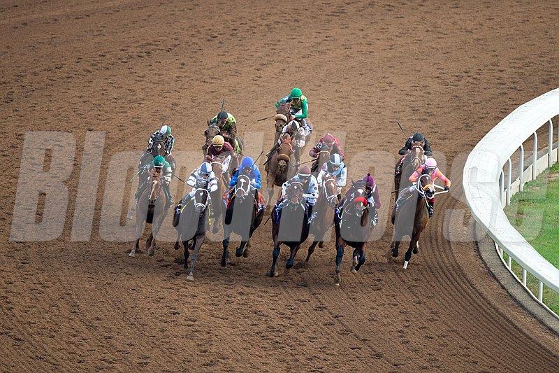 The field heads into the stretch in the Breeders' Cup Distaff (gr. I).