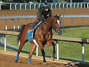 Grand Arch works at Keeneland Oct. 18.