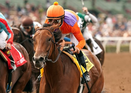 Spendthrift Farm's Beholder and jockey Mike Smith win the Grade I, $300,000 Zenyatta Stakes, Saturday, September 27, 2014 at Santa Anita Park, Arcadia CA.
