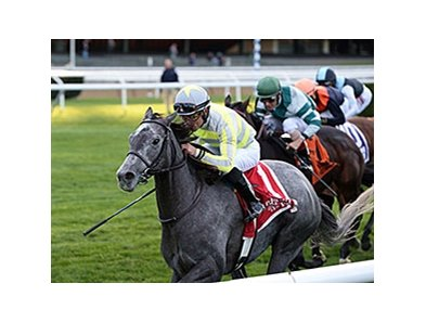 "Stellar Path leads the way to victory in the Athenia Stakes.<br><a target=""blank"" href=""http://photos.bloodhorse.com/AtTheRaces-1/At-the-Races-2015/i-fmgNNk6"">Order This Photo</a>"