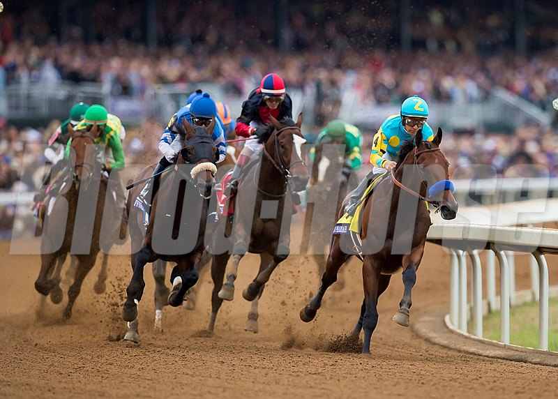 American Pharoah leads the pack around the first turn of the Breeders' Cup Classic (gr. I).