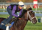 Sticksstatelydude Withdrawn From BC Juvenile
