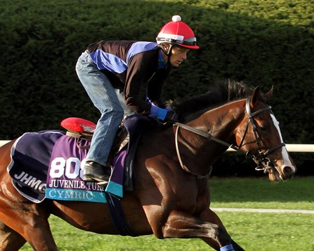 Cymric (Breeders' Cup Juvenile Turf) on the turf course at Keeneland on October 29, 2015. Photo By: Chad B. Harmon