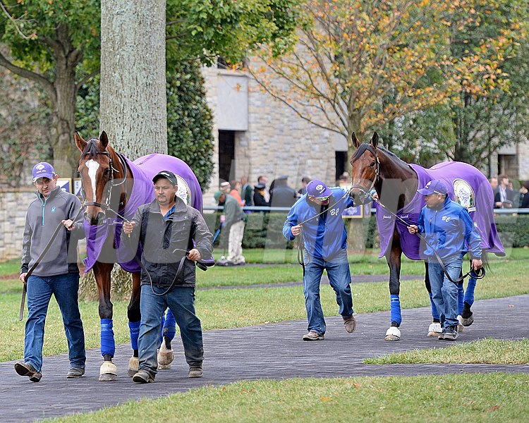 Caption: Grand Arch, front, and Marchman school on race day.