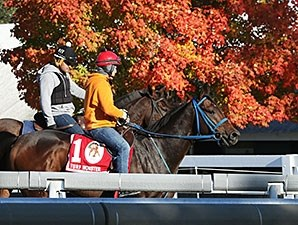 Mongolian Saturday - Keeneland, October 20, 2015.