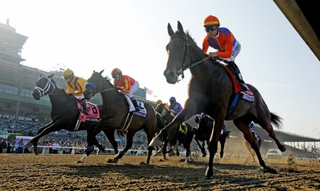 Beholder wins the Grey Goose Breeders' Cup Juvenile Fillies (gr. 1)