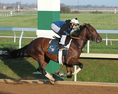 Bobby's Kitten - Morning Workout - Keeneland Race Course - 102315