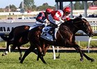 Mongolian Khan Powers Away in Caulfield Cup