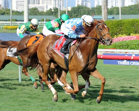 Free as a Bird flies home in the Captiva Island Handicap at Gulfstream Park on March 18, 2015.