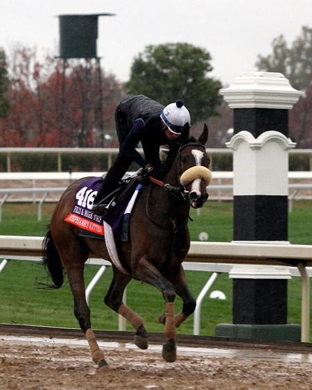Stephanie's Kitten (Breeders' Cup Filly & Mare Turf) on the track at Keeneland on October 28, 2015. Photo By: Chad B. Harmon