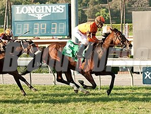 Alexis Tangier wins the 2015 Swingtime Stakes.