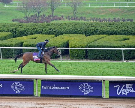 Caption: Ruby Notion in Juvenile Fillies with sponsorship signs
