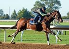 Runhappy works at Keeneland Oct. 14.
