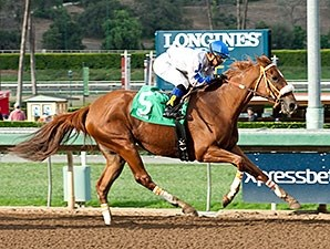 Our Pure Creation wins the California Distaff Handicap.