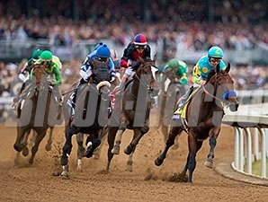 American Pharoah and the Breeders' Cup Classic field.