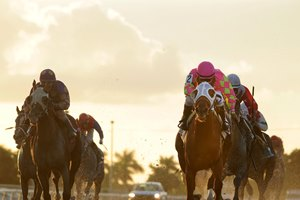 Lil Meatball rolls home in the Juvenile Sprint Stakes at Gulfstream Park West.