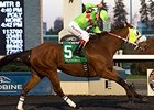 Miss Mischief Rallies to Take Bessarabian
