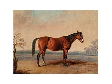 Idlewild, painted by Edward Troye