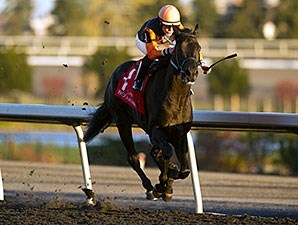 Shakhimat wins the Coronation Futurity.