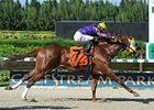 "Saraguaro is slated to seek his third straight stakes victory in the Sunshine Millions Classic.<br><a target=""blank"" href=""http://photos.bloodhorse.com/AtTheRaces-1/At-the-Races-2015/i-7rd94Dt"">Order This Photo</a>"