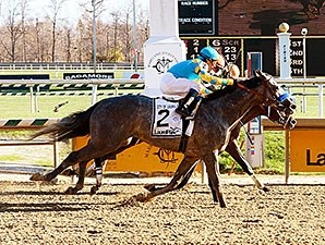 El Kabeir wins the 2015 City of Laurel Stakes.