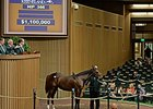 Hip 366, a daughter of Tapit, sold for $1.1 million on Nov. 3.