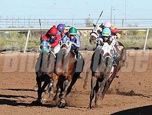 My Dandy Girl wins the Pepper's Pride NM Classic Championship Fillies & Mares