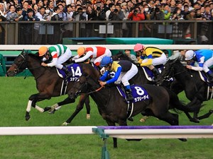 Having his best year yet, Lovely Day tallied his second group I win in a four-race win streak in Tokyo, capturing the Tenno Sho (Autumn) by a half-length from hard-charging Staphanos.