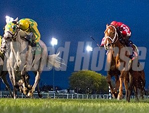 Bold Rally (#5) and Yankee Dealer (#8) in a dead heat for first in the 2015 Cicero Handicap