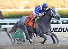 "Mohaymen<br><a target=""blank"" href=""http://photos.bloodhorse.com/AtTheRaces-1/At-the-Races-2015/i-jR9jCfm"">Order This Photo</a>"