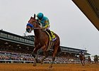 "American Pharoah's Breeders' Cup Classic victory<br><a target=""blank"" href=""http://photos.bloodhorse.com/BreedersCup/2015-Breeders-Cup/Breeders-Cup-Classic/i-c2rPkc8"">Order This Photo</a>"
