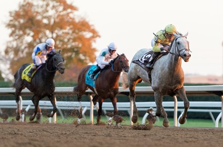With a patient ride and a sweeping move in the final turn, Bailoutbobby took the 1 3/4-mile $200,000 Marathon Stakes (gr. II) at Keeneland by 5 1/4 lengths.