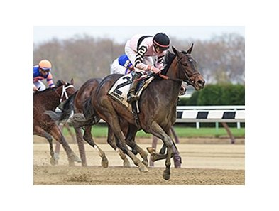 "Lewis Bay comes home strong to take the Demoiselle Stakes.<br><a target=""blank"" href=""http://photos.bloodhorse.com/AtTheRaces-1/At-the-Races-2015/i-9GgKTVm/"">Order This Photo</a>"