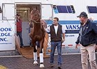 American Pharoah arrived at Coolmore's Ashford Stud Nov. 2.