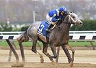 "Mohaymen rallies to remain unbeaten in the Remsen Stakes.<br><a target=""blank"" href=""http://photos.bloodhorse.com/AtTheRaces-1/At-the-Races-2015/i-jvNJ9rc"">Order This Photo</a>"