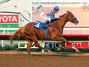 Dortmund cruises to victory in the Native Diver.