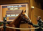 Take Charge Brandi brought $6 million at Keeneland's November breeding stock sale.