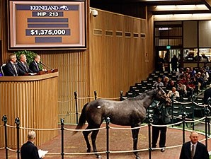 Sunset Glow was bought by for $1.37 million