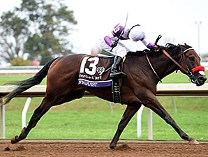 Nyquist wins the 2015 Breeders' Cup Juvenile.