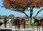 Keeneland: Stonestreet Purchases Lead Session