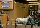 Keeneland November Opens With Increases