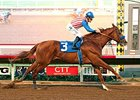 Dortmund won the Native Diver Stakes Nov. 28.