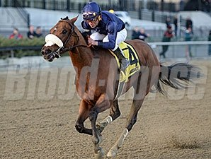 Taris made her trip from Southern California to New York worthwhile with a strong victory in the Go For Wand Stakes at Aqueduct Nov. 27