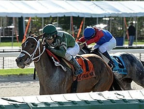 Legal Laura wins the 2015 Millions Distaff Preview Stakes.