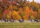Racing at Laurel Park