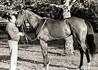 Trainer Angel Penna Sr. with Blitey