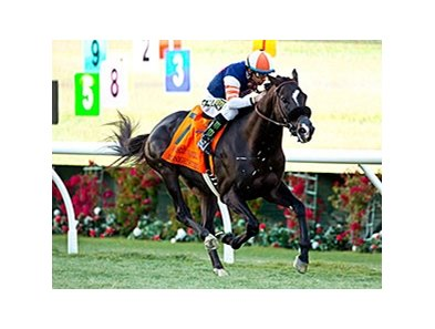 Midnight Storm streaks to victory in the Seabiscuit Handicap.
