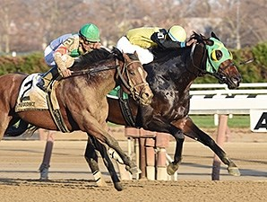 Green Gratto holds off Palace to win the Fall Highweight Handicap.
