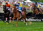 Bonus Ties U.S., English Steeplechase Races
