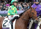 Keen Ice at last year's Breeders' Cup.